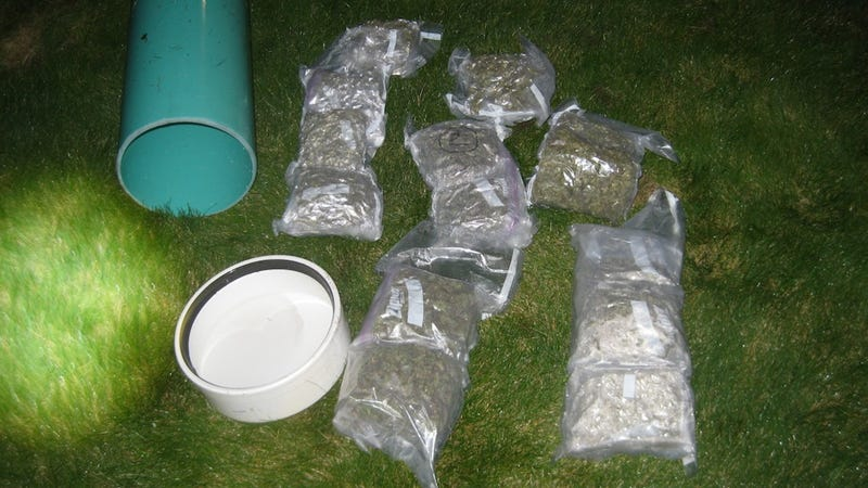 Scuba Diver Busted Smuggling Weed Into U.S. From Canada