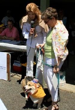 Candace Bushnell Judges Dog Show