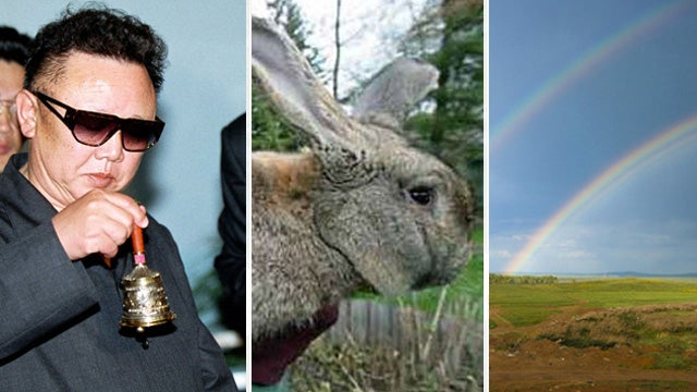 Giant Rabbits and Double Rainbows: The 10 Most Insane Delusions of Kim Jong-il