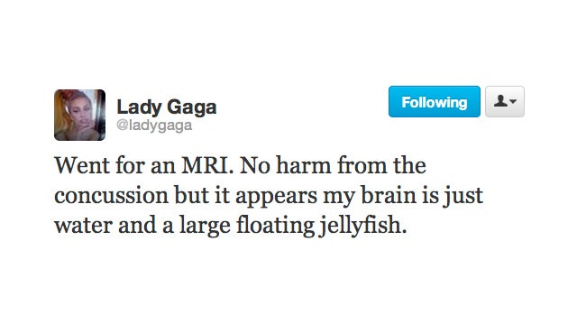 Lady Gaga Has Jellyfish for Brains