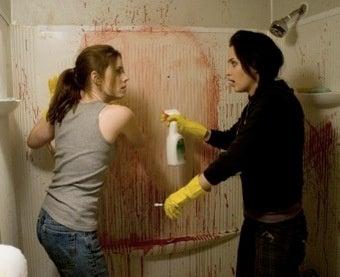 Sunshine Cleaning Dusts Off Indie Movie Clichés
