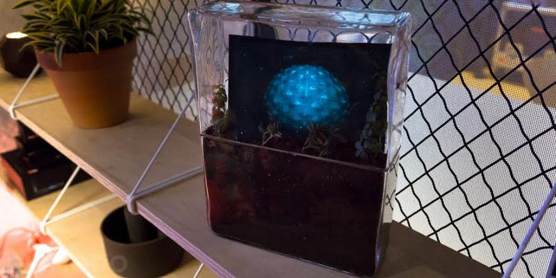 This Flickering Screen Is Powered by Plant-Eating Bacteria