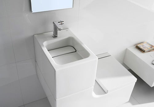 Toilet+Sink Looks Beautiful, Even Though It's Filled With Grey Water
