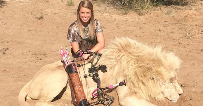 Is It Right To Hunt A Lion?