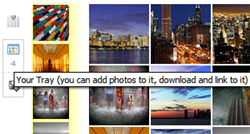 FlickrStorm searches and collects Flickr images