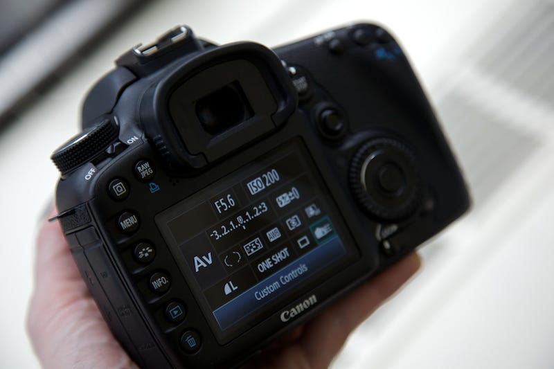 Canon 7D Gallery