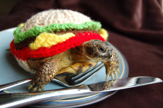 Tortoises in Costumes Are the Best Thing Since Sliced Bread