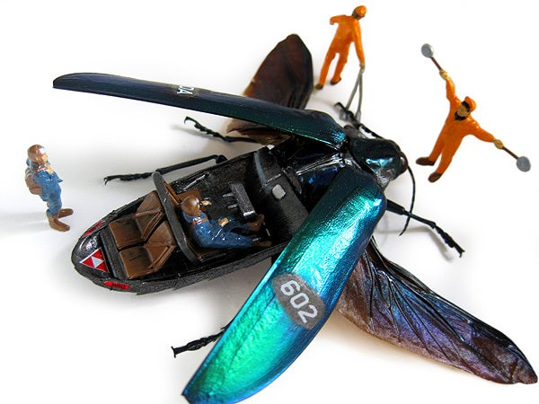 Cyborg taxidermy transforms beetles into airplanes and buses