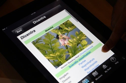 Project Noah Would Be Swamp Thing's Favorite iPad App