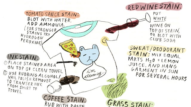 The DIY Stain Removal Infographic Is a Quick Reference for Cleaning Common Stains