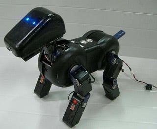 10 Robotic Pets That Deserve to Live in the White House