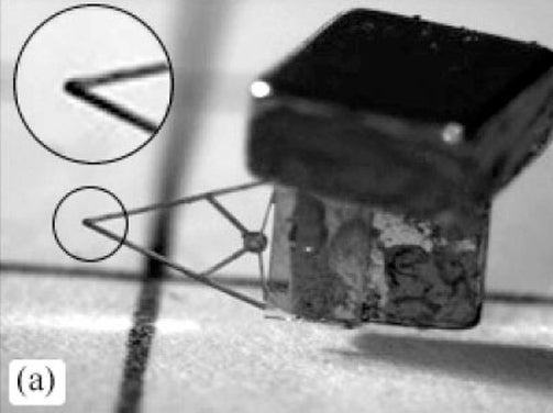 Flying Microbot Gives Wings to Imminent Doomsday Scenario