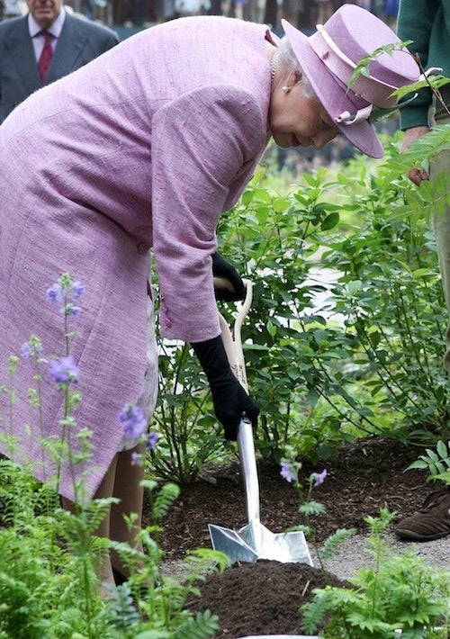 The Queen Mother Exercises Her Green Thumb