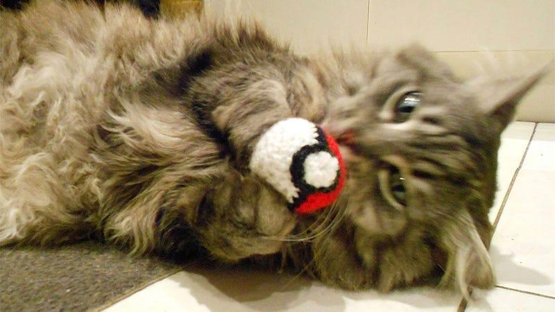 Your Cat Needs Tiny Little Nintendo Hats, OK?