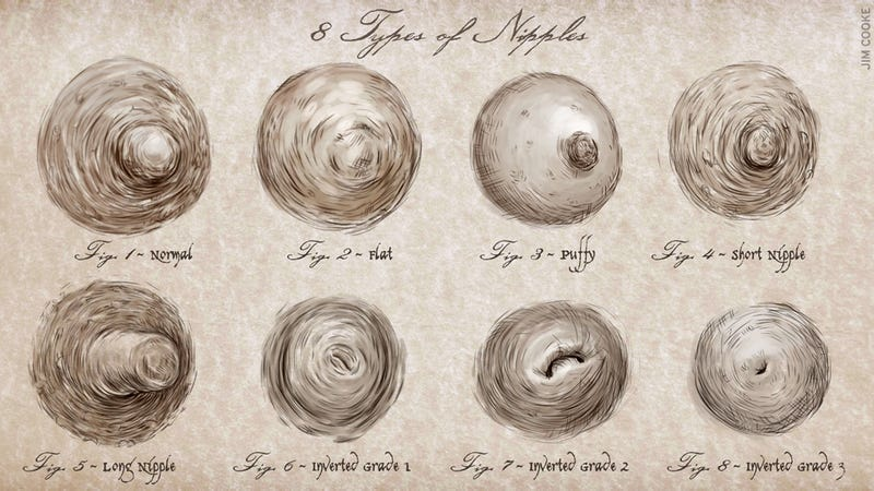 What Type of Nipple Are You?