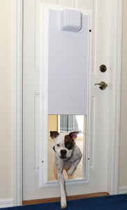 Plexidor is Automatic Star Trek-Like Door for Your Pets (and Only Yours)