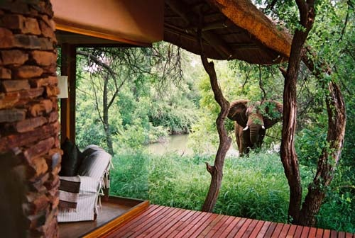 Who Doesn't Want to Live In This House With Elephants In the Garden?