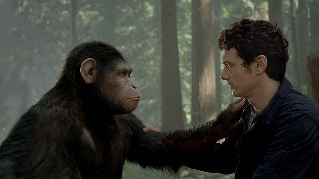 Should we upgrade the intelligence of animals?