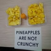 Law School Holds Emergency Pineapple Appreciation Day
