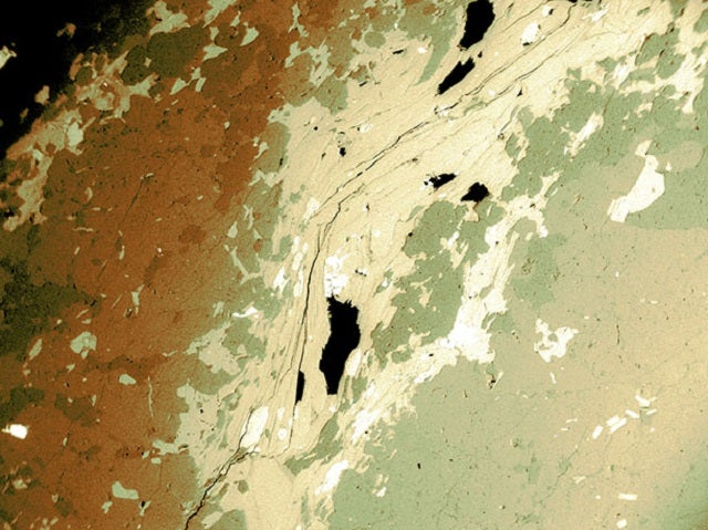 Can you tell satellite images from microscopic pictures? Test yourself