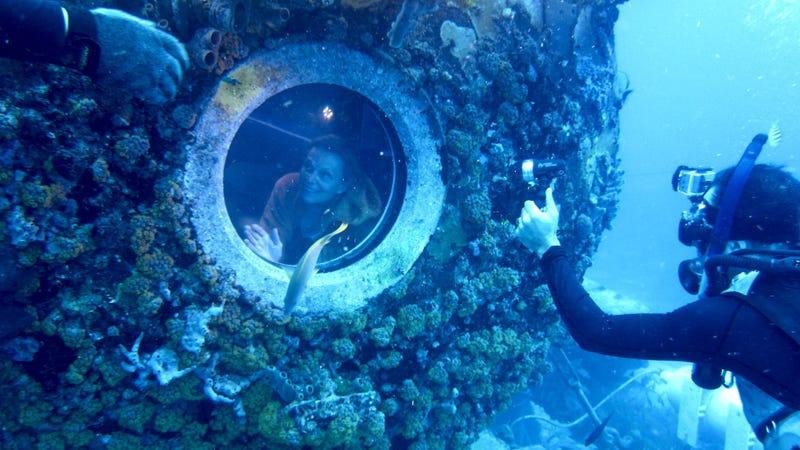 Aquarius Gallery