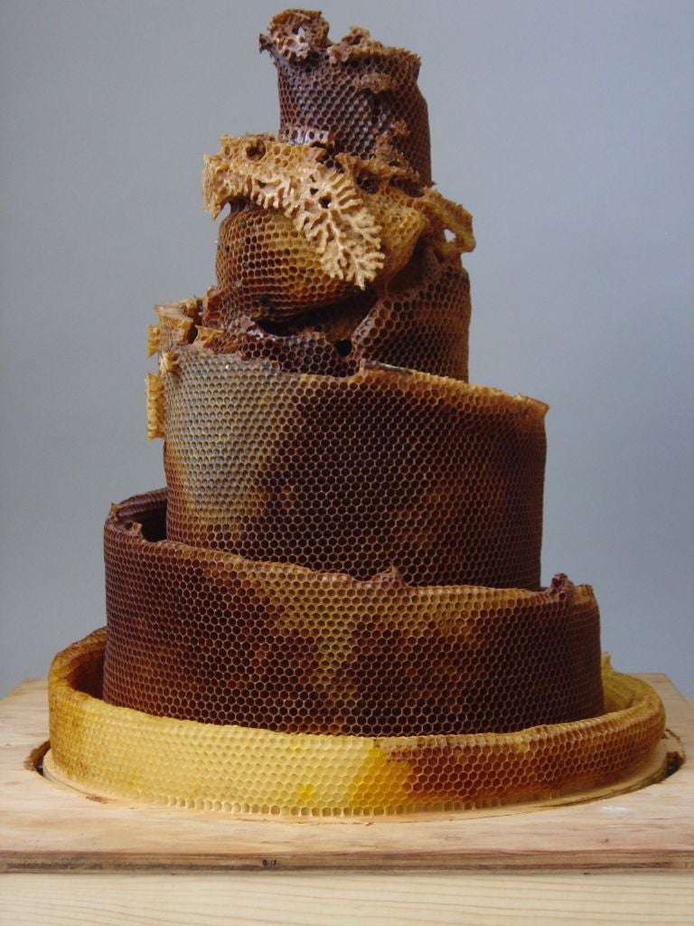 These Honeycomb Sculptures Made by Bees Are Simply Majestic