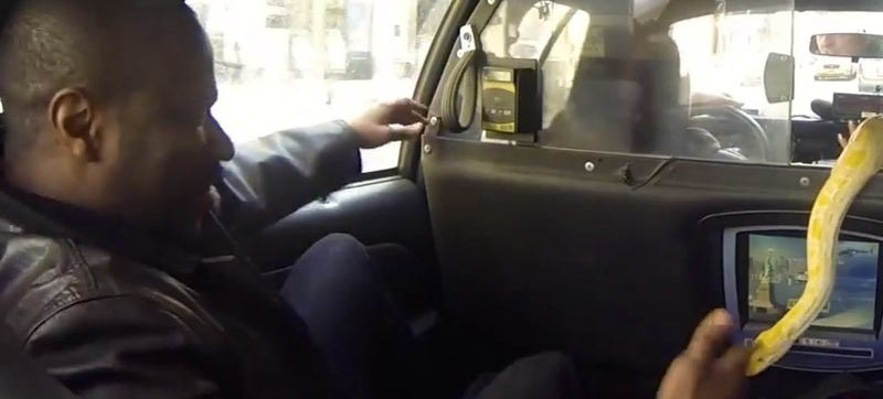 A Snake In A Cab Is A Brilliant Way To Scare The Shit Out Of Passengers
