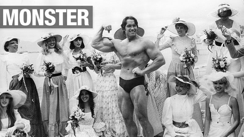 An Encyclopedia of Every Other Awful Thing Arnold Schwarzenegger Has Done