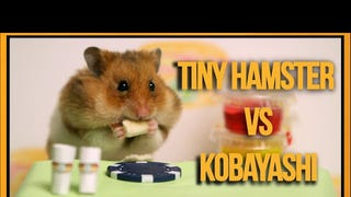 Tiny Hamster Gobbles Tiny Hot Dogs in Tiny Competitive Eating Contest
