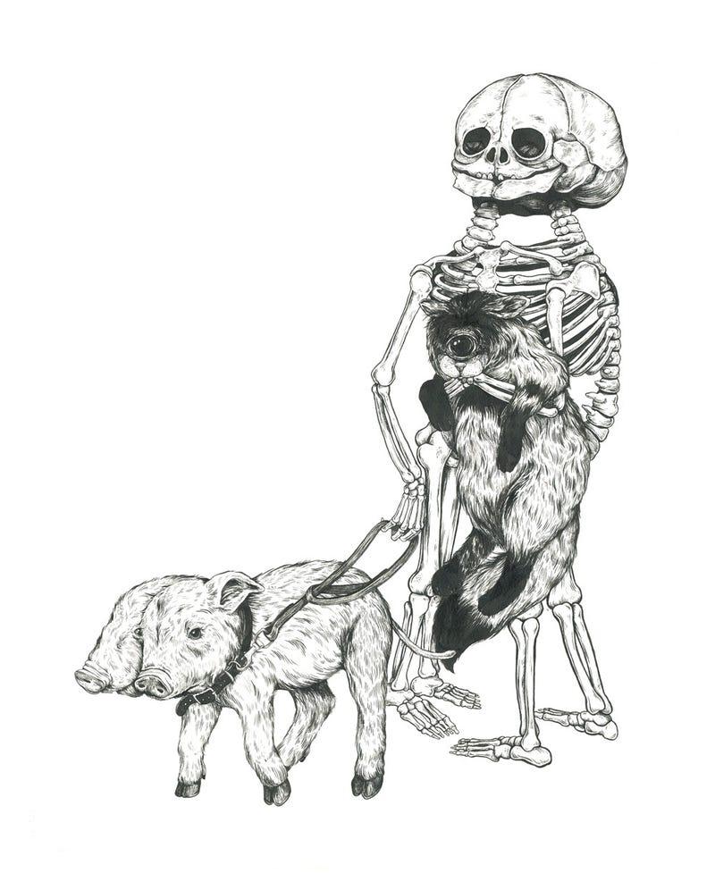 Beautiful art celebrates anatomical oddities