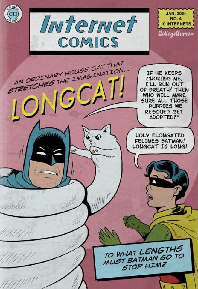 What if Batman fought internet memes?