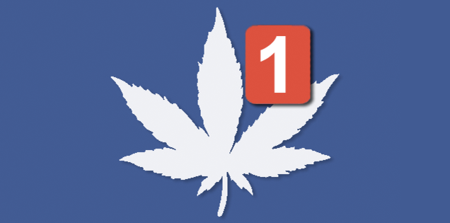 Teen Stoners Freak Out Over Fake Facebook Drug Task Force