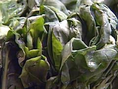 Spinach alternatives