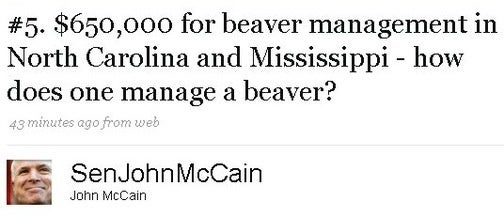 John McCain Doesn't Know How to Manage a Beaver