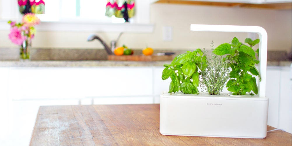 The New Click & Grow Herb Garden Does Everything But Harvest Itself