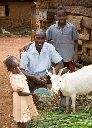 Flyin' Miata donates a goat every time someone buys a turbo kit