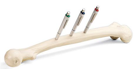 Femur Bone Pen Holder
