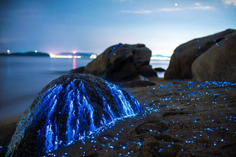 These Glowing Rocks Capture One of Nature's Most Beautiful Phenomena