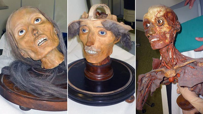 The Terrifying Body Worlds Mummy Heads of 19C Italy