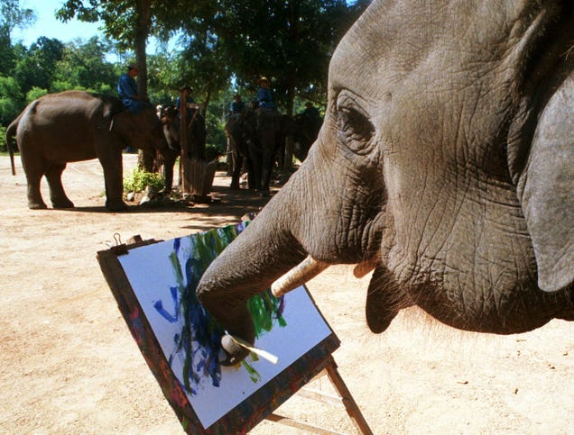 Elephants, monkeys, and the Holy Spirit can't claim copyright in the US