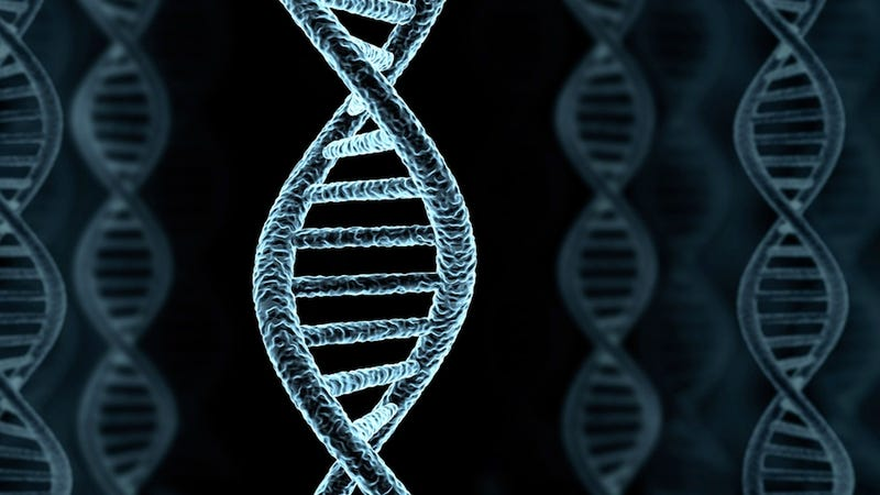 Why Genetic Determinism Is Bad for Humans