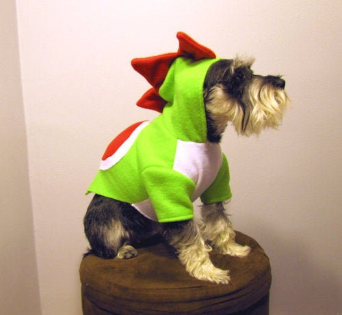 The Wonderful World Of Dog Cosplay