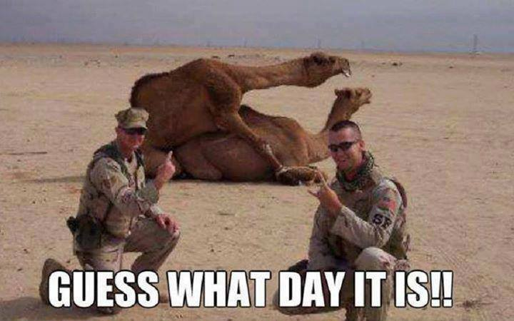 Hump Day Confessional