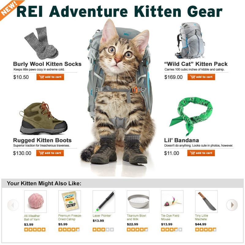 The Very Best April Fools Jokes from 2014, Starring Adventure Kitty!