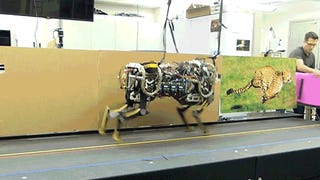 MIT's Robot Cheetah Now Jumps While Running, So Walls Won't Protect You