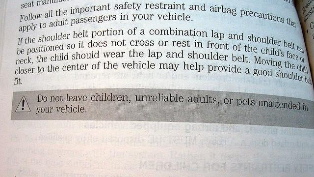 What's The Strangest Thing You've Found In Your Car Manual?