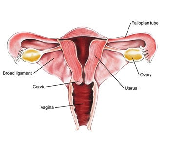 Unregulated Ovarian Cancer Test With Life-Saving Potential Is Not Without Risk
