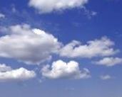 Do You Trust the Cloud?