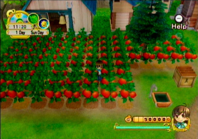 Two New Harvest Moon Games To Celebrate 10th Anniversary