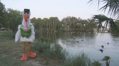 Giant Stork Warns Louisiana Women They May Be Pregnant